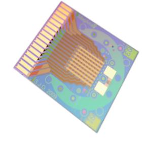 MagArray GMR Chip